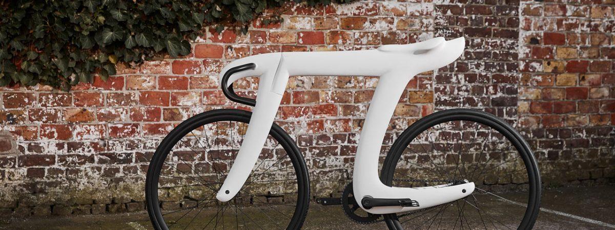 Pi Bike | Martijn Koomen & Tadas Maksimovas